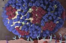 119 Virus Influenza 3x3 cm