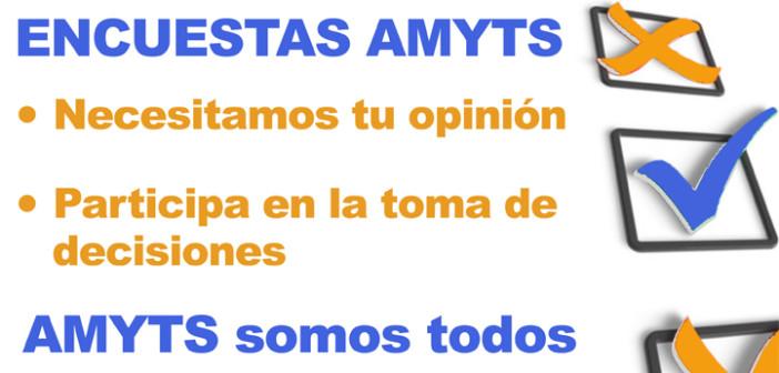 Encuestas AMYTS
