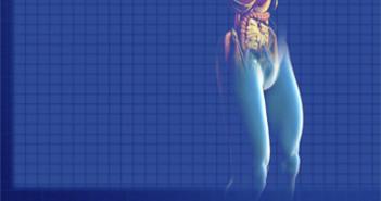204 Ilustracion Medicina Interna 3x3 cm