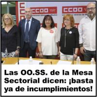 218 OOSS Mesa Sectorial 3x3 cm
