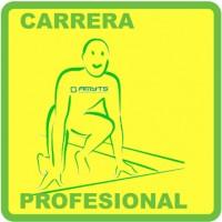 110 Carrera Profesional 3x3 cm