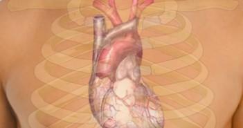 111 Corazón 3x3 cm