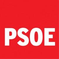111 PSOE 3x3 cm