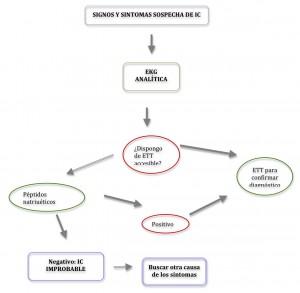 Algoritmo diagnóstico ICC