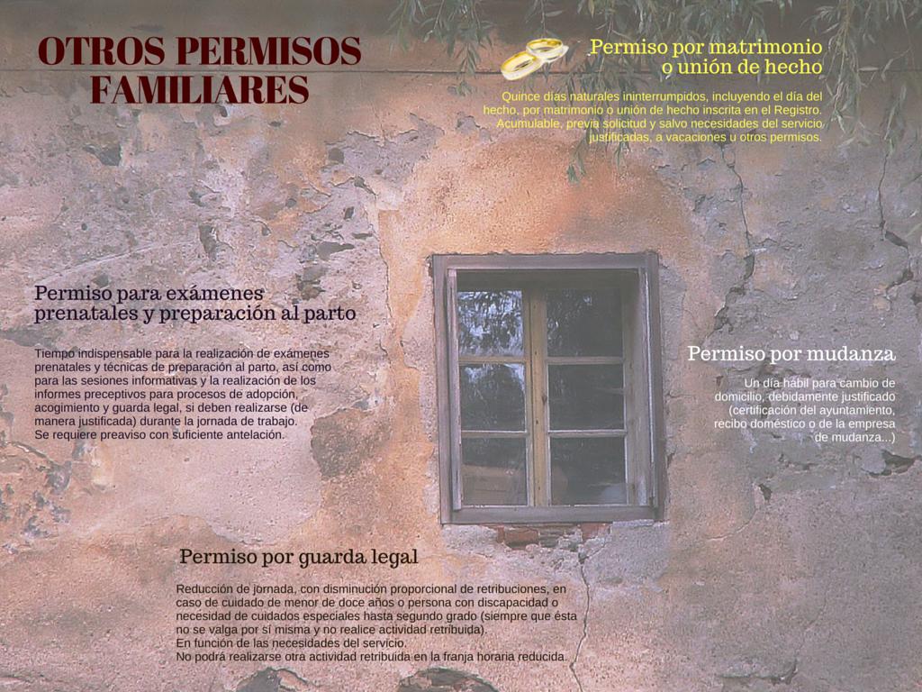 RMM036 ASUNTOS LABORALES OTROS PERMISOS FAMILIARES