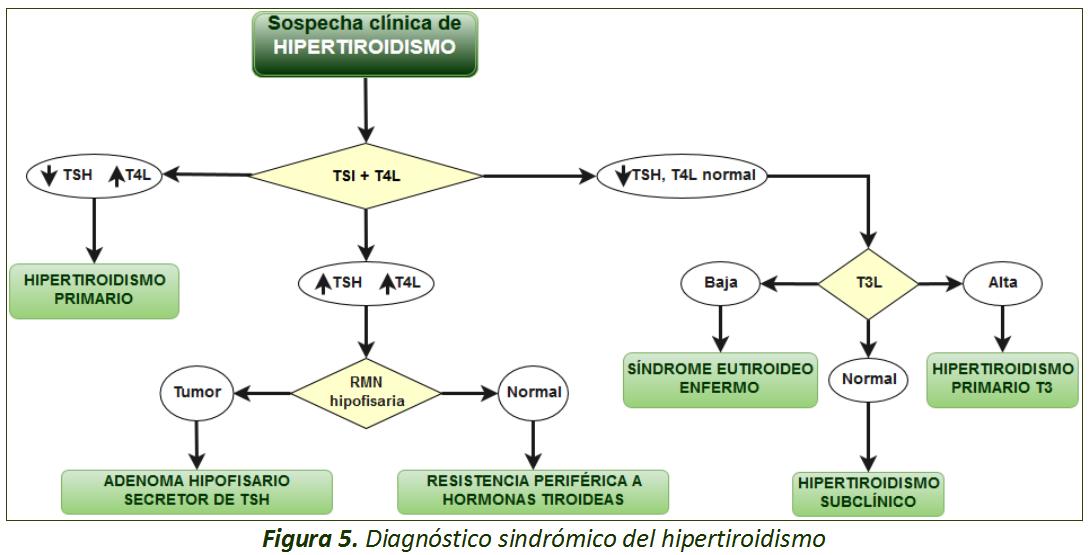 Diagrama1sindr